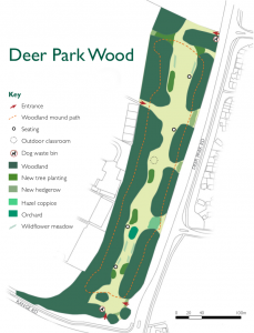 Deer Park Wood schematic plan